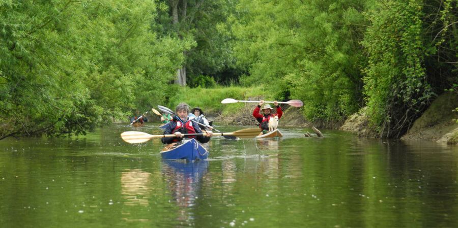 kayak-leo-trophy-2014-07